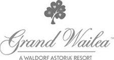 Hawaii Wedding Videography at the Grand Wailea